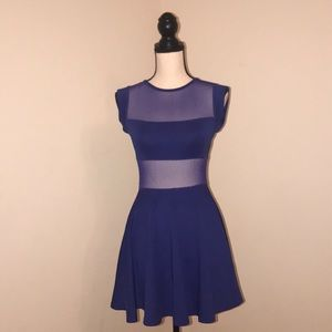 Vibrant Blue Skater Style dress. Arden B. Size XS